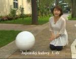 Japonská koule I