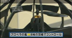 Japonská koule IV